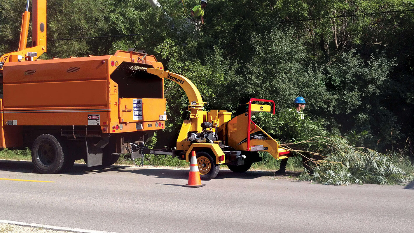 Commercial Tree Services-North Miami Beach FL Tree Trimming and Stump Grinding Services-We Offer Tree Trimming Services, Tree Removal, Tree Pruning, Tree Cutting, Residential and Commercial Tree Trimming Services, Storm Damage, Emergency Tree Removal, Land Clearing, Tree Companies, Tree Care Service, Stump Grinding, and we're the Best Tree Trimming Company Near You Guaranteed!
