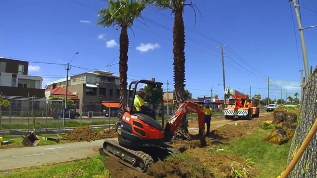 Palm Tree Removal-North Miami Beach FL Tree Trimming and Stump Grinding Services-We Offer Tree Trimming Services, Tree Removal, Tree Pruning, Tree Cutting, Residential and Commercial Tree Trimming Services, Storm Damage, Emergency Tree Removal, Land Clearing, Tree Companies, Tree Care Service, Stump Grinding, and we're the Best Tree Trimming Company Near You Guaranteed!